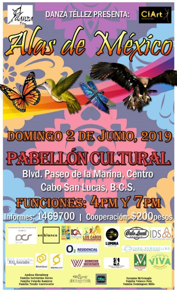 dance-danza-baja-storm-panel-2019